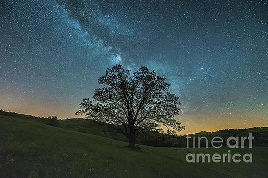 Milky Way Mountain by Robert Loe