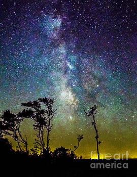 Nick Zelinsky - Milky Way over East Point