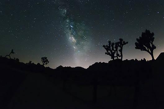 Milky Way over Joshua Tree Park by Greg Amptman