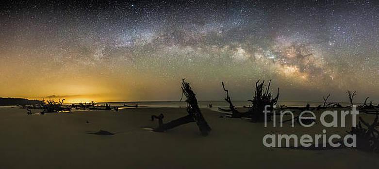 Milky Way Roots Panorama by Robert Loe