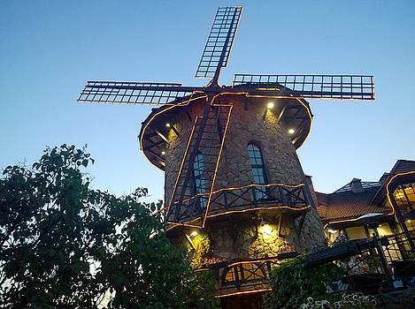 Mill by Aleksandr Nikolaev