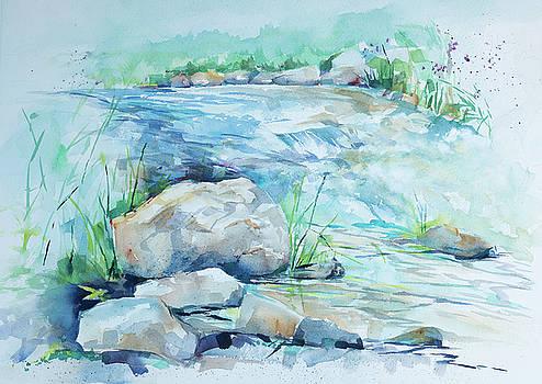 Mill Creek by Adam VanHouten