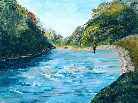Mill Creek by Sandra Winiasz