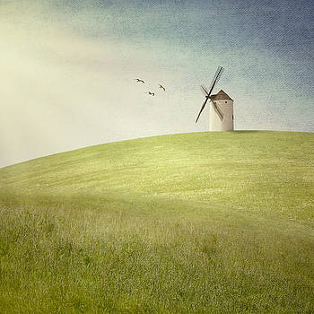 Mill on a hill by Mickael PLICHARD