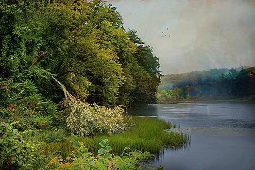 Mill Pond II by John Rivera