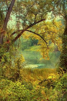 Mill Pond by John Rivera