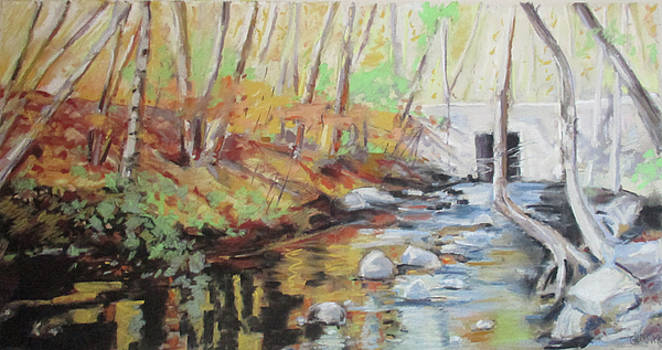 Mill Stream, October by Grace Keown