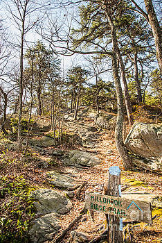 Millbrook Trail by Jim DeLillo
