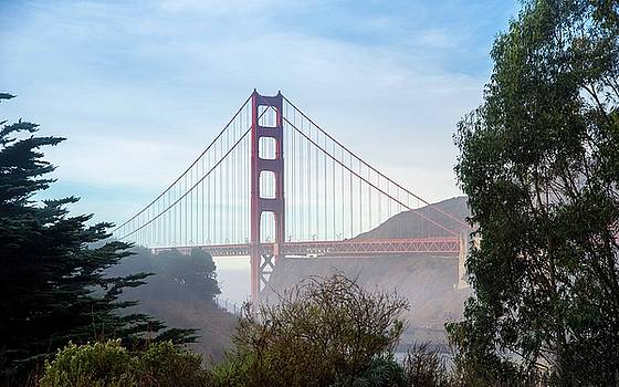 Golden Gate Bridge and Trees by Janet Kopper
