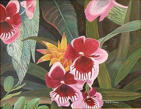 Miltoniopsis Orchid by Mary Ann Leake
