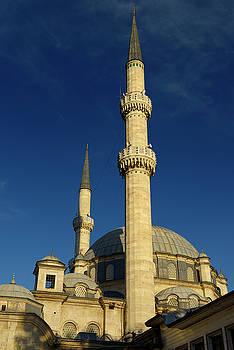 Reimar Gaertner - Minarets and domes of Eyup Sultan Mosque Istanbul Turkey
