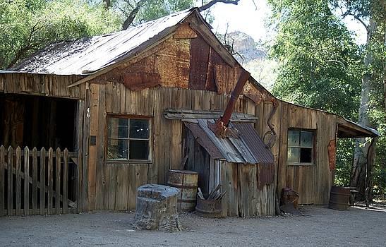Miners cabin. by Robert Rodda