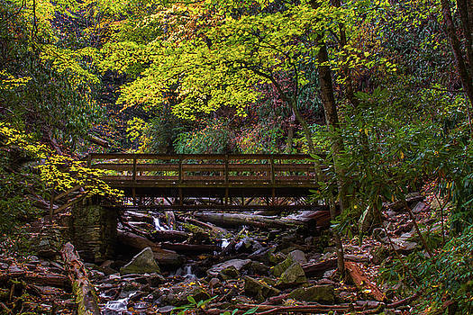 Mingo Falls Bridge by Blue Ridge Mountain Life