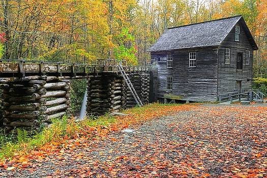 Mingus Mill In The Great Smoky Mountains National Park by Frank G Montoya