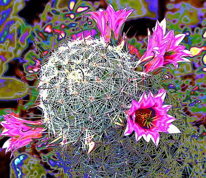 Mini Cactus by M Diane Bonaparte