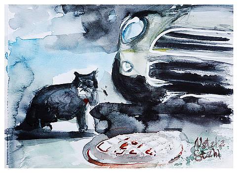 Mini Cooper Cat by Natalia Stahl