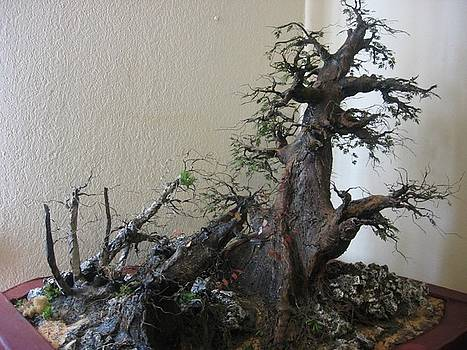 Mini Forest Sculpture - Recycled 3D Art by Nelbert  Flores