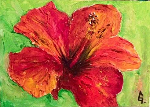 Mini hibiscus series by Maria Iurescia