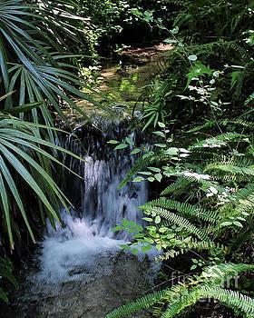 Mini Waterfall by John Eide