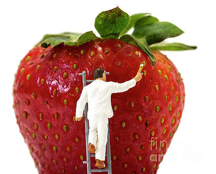 Compuinfoto - miniature man painting strawberries