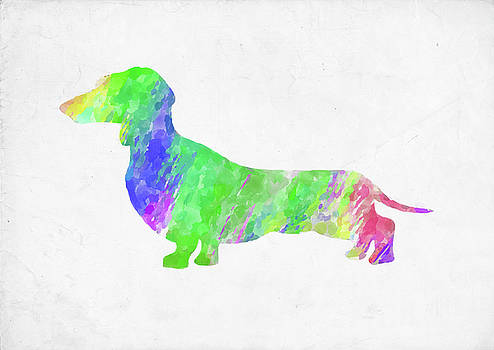 Ricky Barnard - Minimal Abstract Dog Watercolor III