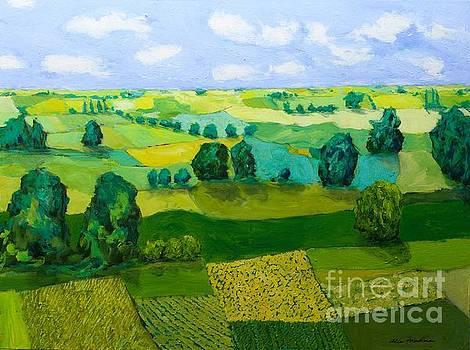 Minnesota Fields by Allan P Friedlander