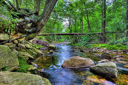 David Hahn - Minnewaska State Park