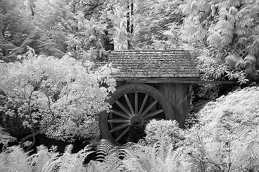 Minter Water Wheel by Bill Kellett