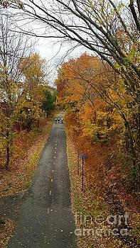 Minuteman Cyclists in the Fall 2 by Leara Nicole Morris-Clark
