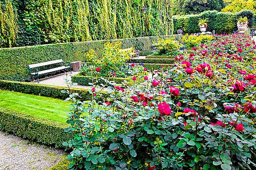 Robert Meyers-Lussier - Mirabell Gardens Study 10
