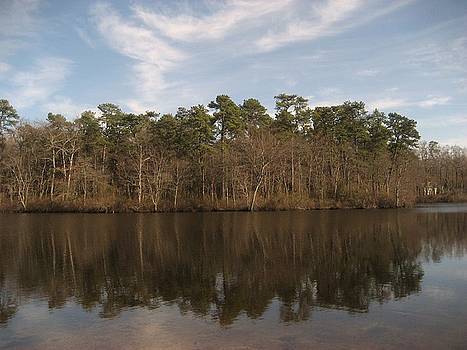 Mirror Lake by Jennifer  Sweet