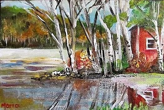 Mirror Lake Post Card for Aunt Chickie by Maria Milazzo