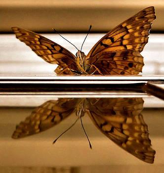 Karen Scovill - Mirror Mirror