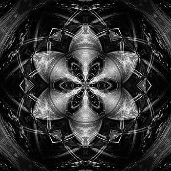 #mirrorlab #trees #kaleidoscope by Jessica Louis