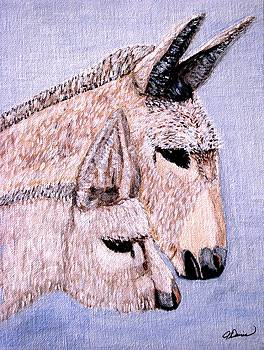Mischievous Burros by Angela Davies