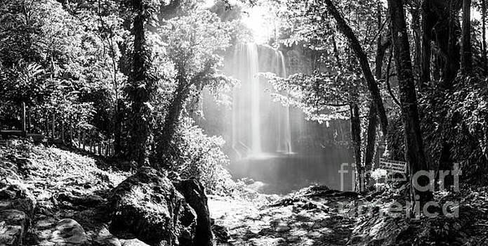 Tim Hester - Misol Ha Waterfall Mexico Black and White
