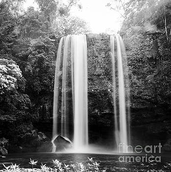 Tim Hester - Misol Ha Waterfall Palenque Black and White