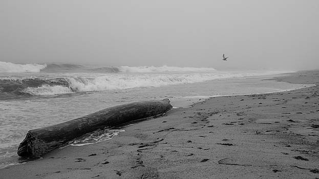 Misquamicut Beach in Fog by Kirkodd Photography Of New England