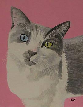Miss Pretty Kittie by Hilda and Jose Garrancho