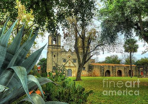 Michael Tidwell - Mission Concepcion with Agave americana