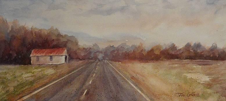 Mississippi Delta by Terri Cowart
