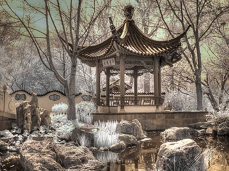 Missouri Botanical Chinese Friendship Garden by Jane Linders