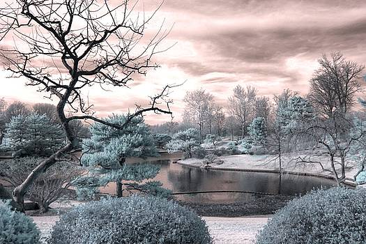 Missouri Botanical garden infrared pond blue by Jane Linders