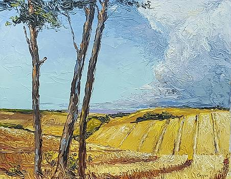 Missouri Landscape by Jerrold Carton