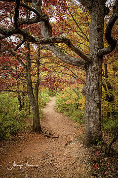 Missouri Trail Beauty by Allen Ahner
