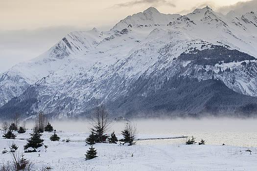 Mist at Sunset by Michele Cornelius