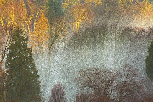 Mist in the Park by Sheldon Bilsker
