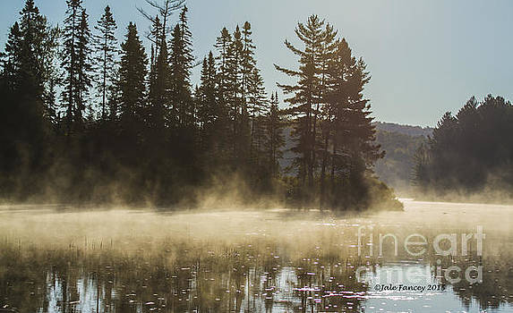 Mist on Costello Lake by Jale Fancey