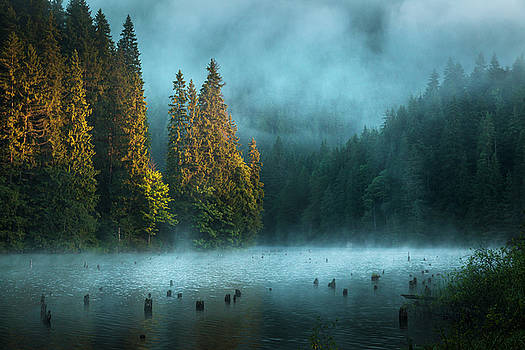 Mist on the lake by Toma Bonciu