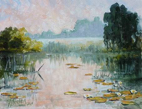 Mist over water lilies pond by Irek Szelag